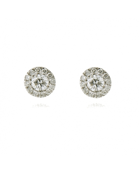 Diamond Halo Pave Earrings in 14k White Gold